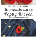 MAIN PIN BLOG POSTER - Poppy Brooch Applique