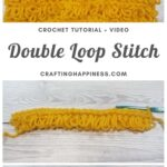 MAIN PIN BLOG POSTER - The Double Loop Stitch