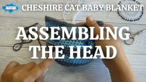 CHESHIRE CAT BABY BLANKET - ASSEMBLING THE HEAD
