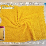 FB BLOG POSTER - No Bunny Loves You Like I Do Baby Blanket