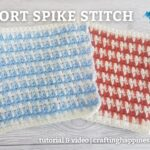 FB BLOG POSTER - Short Spike Stitch Crafting Happiness