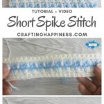 MAIN PIN BLOG POSTER Short Spike Stitch Crafting Happiness